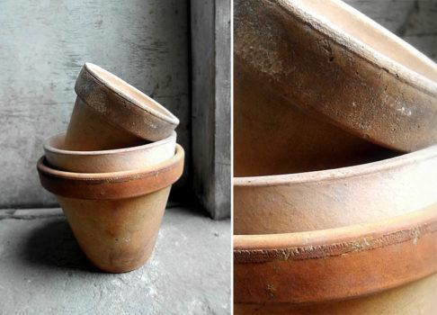 Nalot Na Doniczkach Ceramicznych Jak Się Go Pozbyć