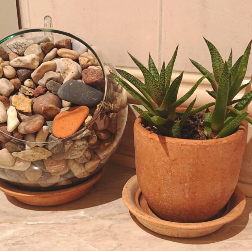 DSC 0089 e1552995715268 840x835 - Ceramika włoska