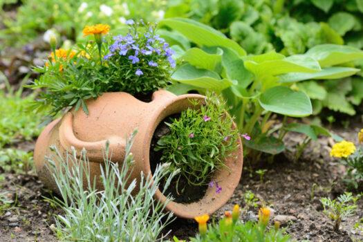 Ceramiczne dzbany ogrodowe